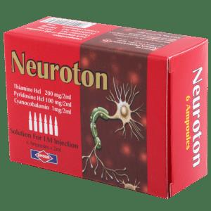 neuroton am_1